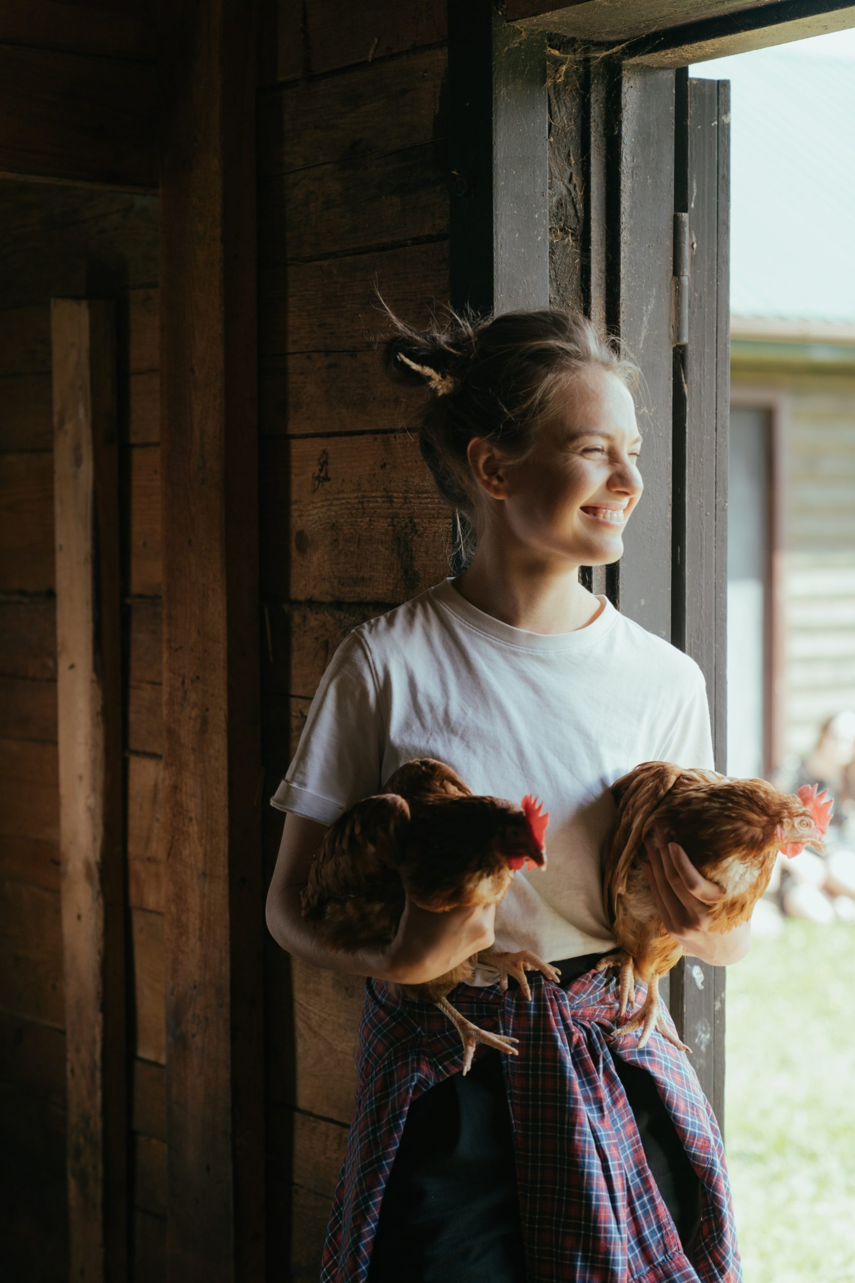 poulorama-veterinaires-specialises-pour-les-poules-de-compagnie